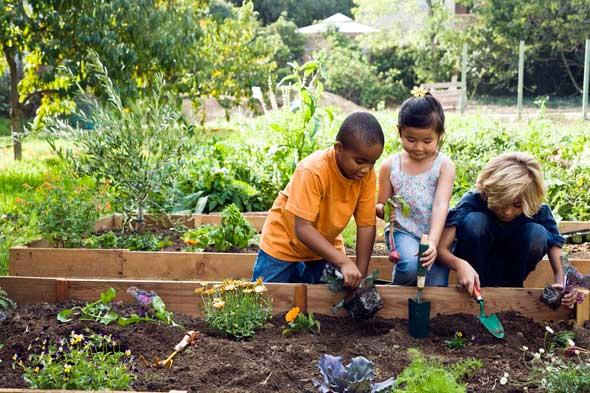 community-garden-kids-plant-590jn071410-1279147997
